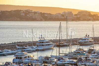 view_to_marina.jpg